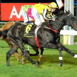 Shares Available in Yearlings to Race